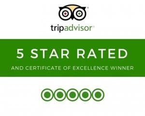 5- Star Rated