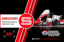 Simraceway Performance Karting Center Season Pass